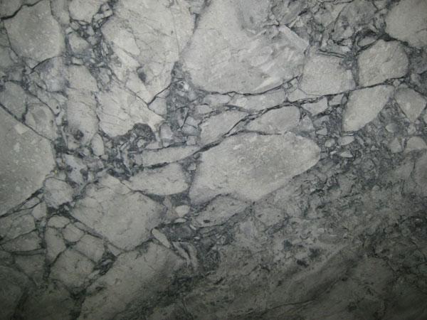Caputo International Inc Gray Granite